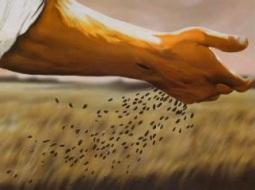 Jesus sowing seed