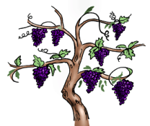 jesus-vine-branch-clipart-1